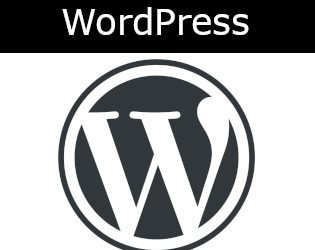 How Well Does your Theme Work with the WordPress Core?